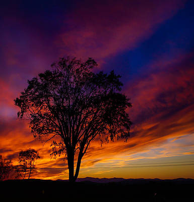 Photograph - White Mt Sunset by Dawn Hagar