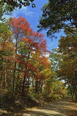 White Oak Mountain Colors Art Print by Don Condley