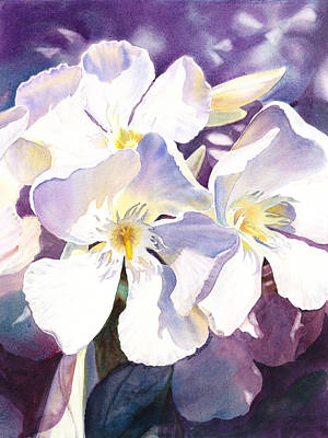 Florals Royalty-Free and Rights-Managed Images - White Oleander by Irina Sztukowski