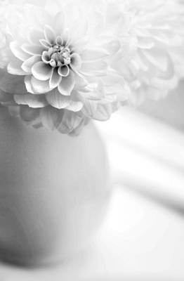 White Flower Photograph - White On White by Rebecca Cozart