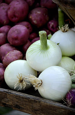 Photograph - White Onions And Red Potatoes by Julie Palencia