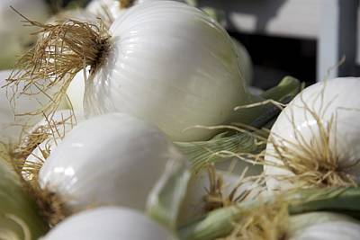 Photograph - White Onions by Terry Horstman