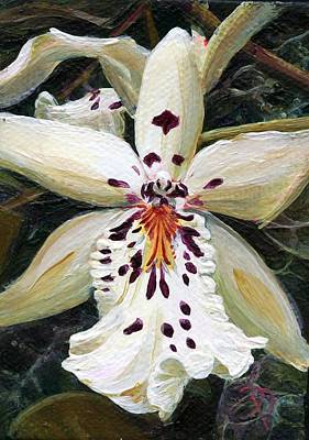 Painting - White Orchid by Donna Page
