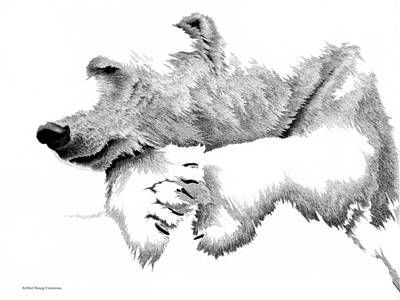 Snow Drifts Drawing - White Out by Doug Comeau