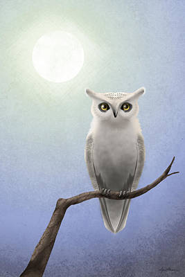 Bird Digital Art - White Owl by April Moen