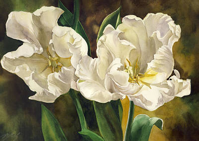 White Parrot Tulips Art Print by Alfred Ng
