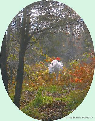 White Paso Fino Stallion Enjoys The Autumn Day Art Print