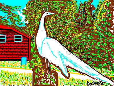 White Peacock Art Print by Anand Swaroop Manchiraju