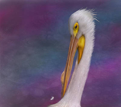 Digital Art - White Pelican by Hazel Billingsley