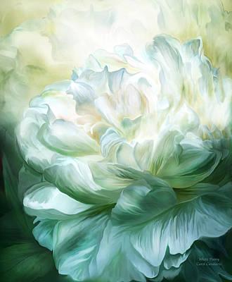 Mixed Media - White Peony by Carol Cavalaris