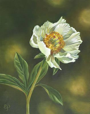 Painting - White Peony by Elena Polozova