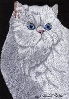 White Persian Vignette Art Print by Anita Putman