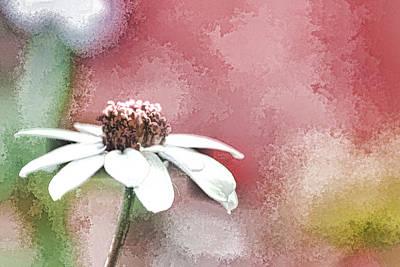 Mixed Media - White Petals by Trish Tritz
