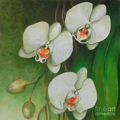 Painting - White Phaleanopsis Orchid II by Edoen Kang