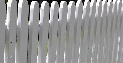 Photograph - White Picket Fence 3 by The Art of Marsha Charlebois