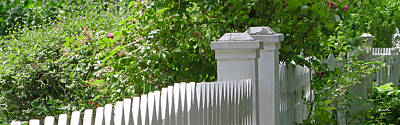 Photograph - White Picket Fence 7 by The Art of Marsha Charlebois