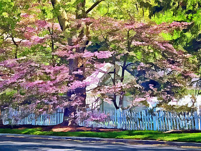 White Picket Fence By Flowering Trees Art Print by Susan Savad