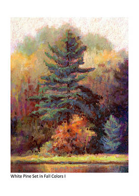 Painting - White Pine Set In Fall Colors I by Betsy Derrick