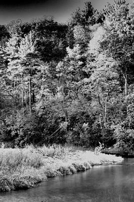 Photograph - White Pines Forest State Park by Roger Passman