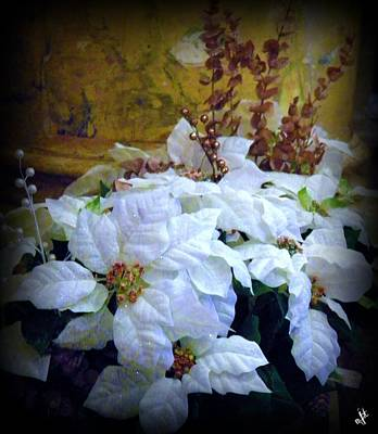 Art Print featuring the photograph White Poinsettia by Michelle Frizzell-Thompson
