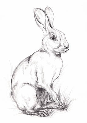 Drawing - White Rabbit In Graphite by MM Anderson