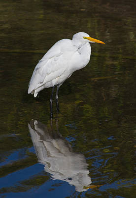 The Bunsen Burner - White Reflection by Jeff Donald