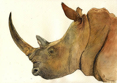 White Rhino Head Study Art Print by Juan  Bosco