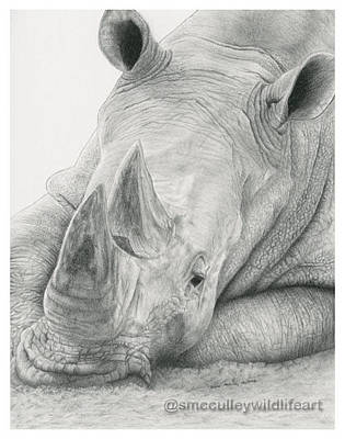 Rhinocerus Drawing - White Rhino by Susan McCulley