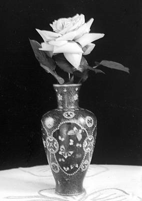 Photograph - White Rose Antique Vase by William Haggart