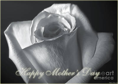 Photograph - White Rose Greeting Card  Mother's Day by Debbie Portwood