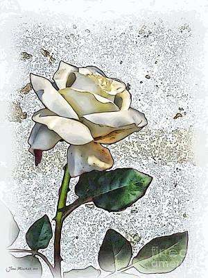 Photograph - White Rose by Joan  Minchak