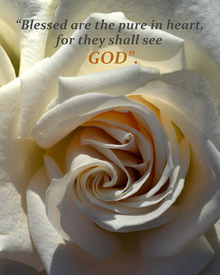 Photograph - White Rose Macro And Scripture by Sandi OReilly