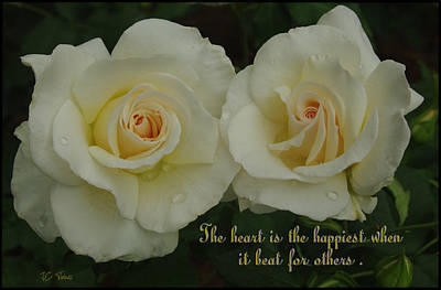 Photograph - Double White Roses by James C Thomas