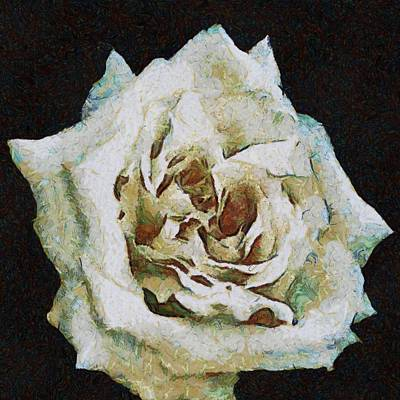 Painting - White Rose by Taiche Acrylic Art