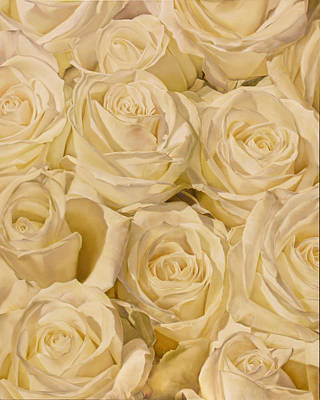 Roses Painting - White Roses 48'' X 60'' by Thomas Darnell