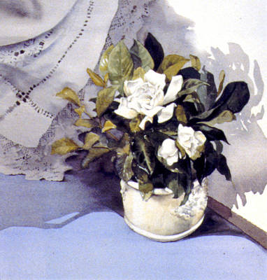 Vase Table Photograph - White Roses by Julia Rowntree