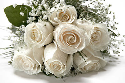 Plants Photograph - White Roses by Susan Candelario