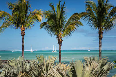 Photograph - White Sails. Mauritius by Jenny Rainbow