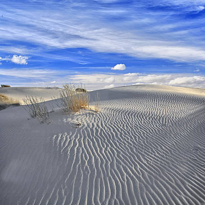 Art Print featuring the photograph White Sand And Blue Sky by Wendell Thompson