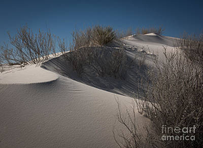 Photograph - White Sand Dune by Sherry Davis