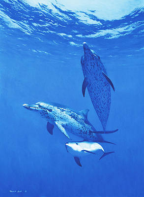Painting - White Sand Ridge - Atlantic Spotted Dolphins by Randall Scott