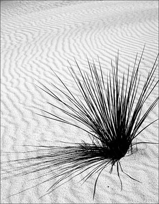 White Sands 07 Art Print