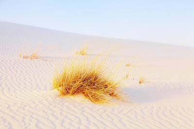 Southwest Landscape Photograph - White Sands by Alexey Stiop