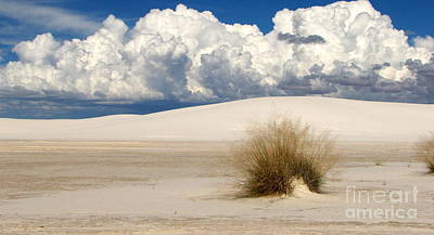 White Sands Cross Art Print by Marilyn Smith