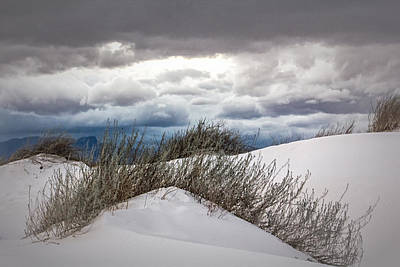 Digital Art - White Sands Curves by Georgianne Giese