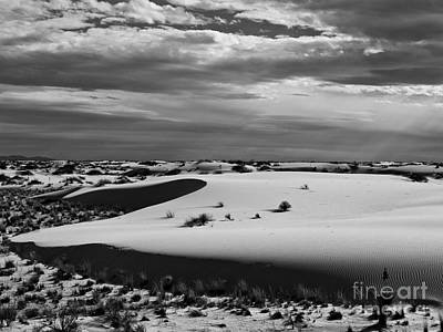 Photograph - White Sands II by Craig Pearson