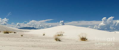 Marilyn Photograph - White Sands Landscape by Marilyn Smith