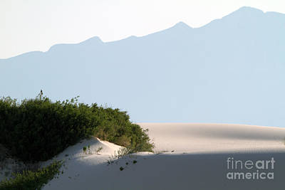 Photograph - White Sands Landscape by Martha Marks