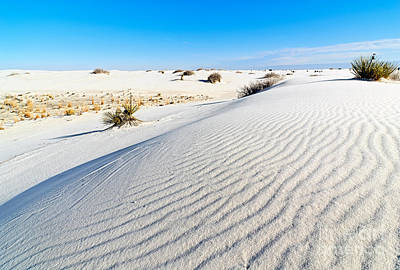 Southwestern States Photograph - White Sands - Morning View White Sands National Monument In New Mexico. by Jamie Pham