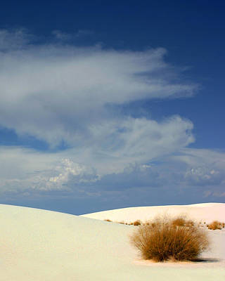 Photograph - White Sands Peace by Jack Pumphrey